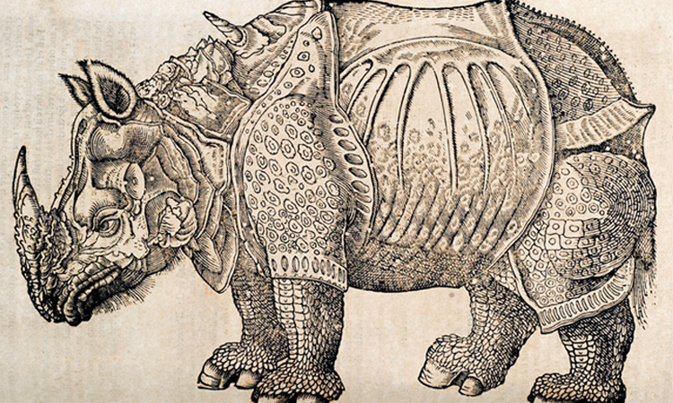 History of Four Footed Beasts